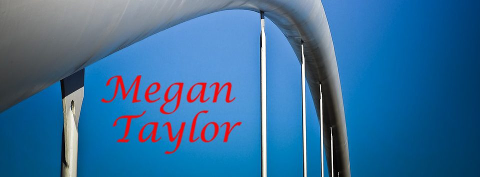 Image of Megan Taylor Logo under the arch of a bridge.